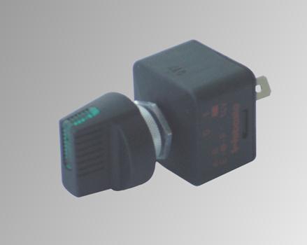 Webasto Schalter 12V